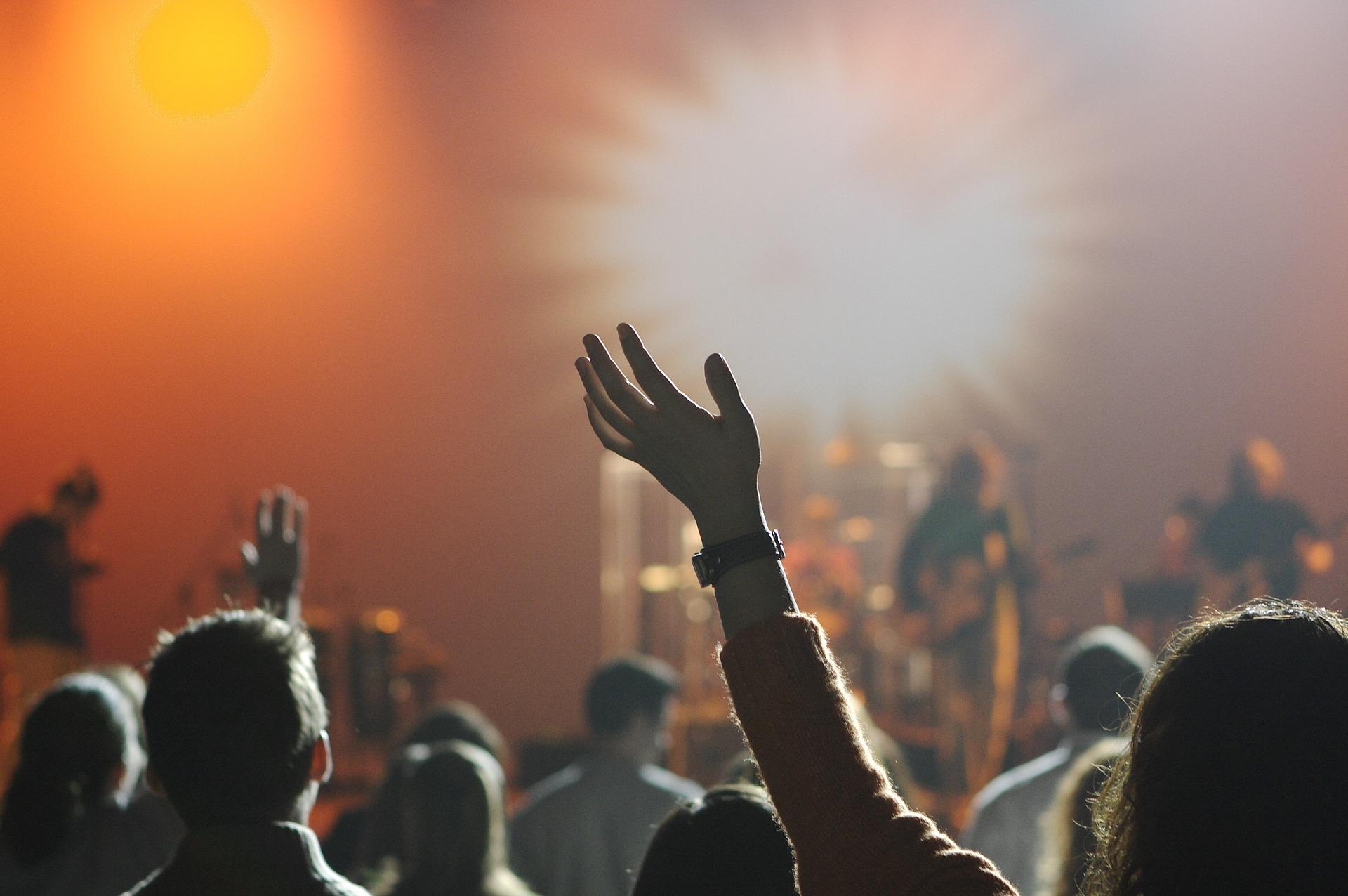 music show fans